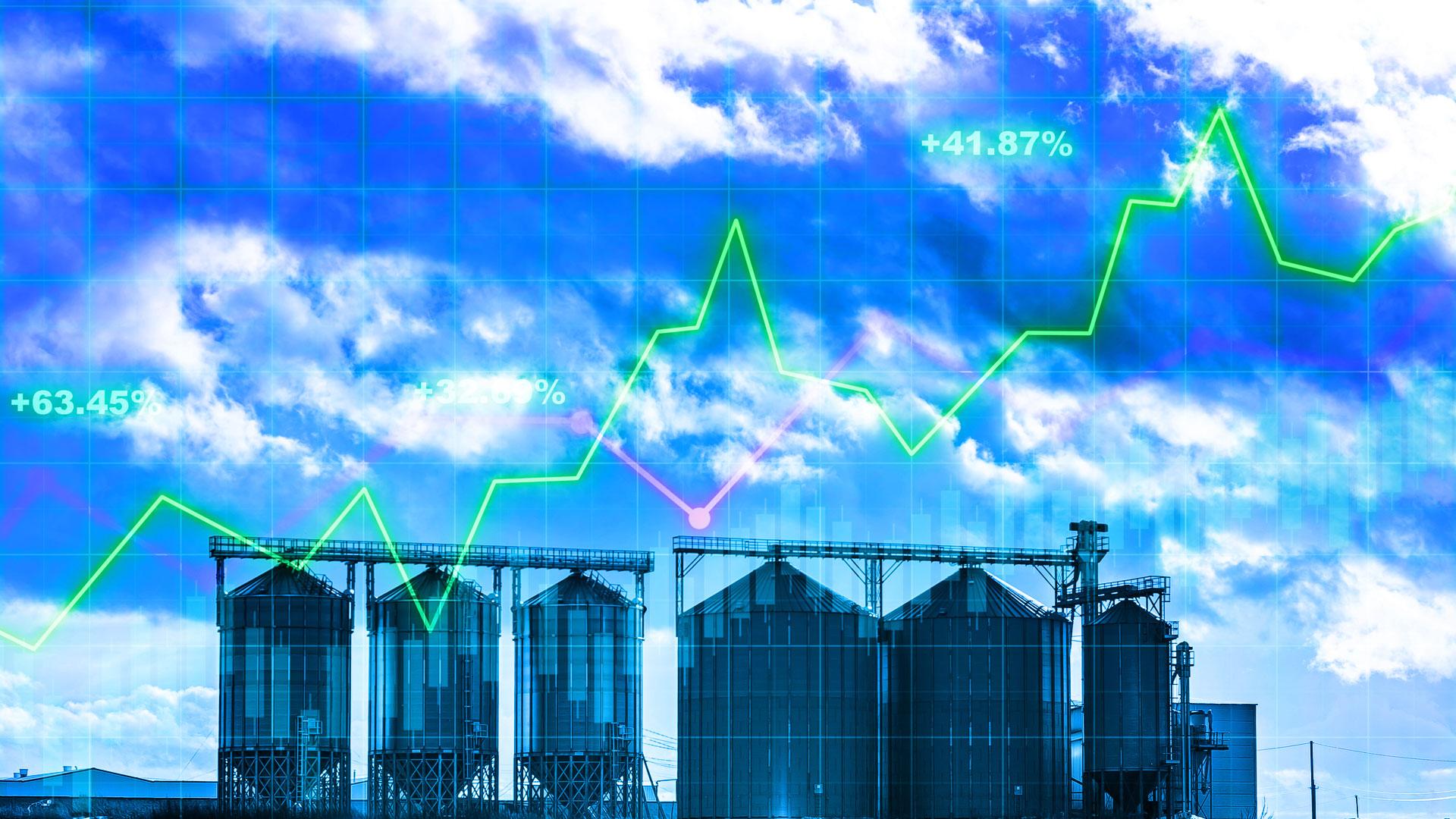 Grain Marketing Plans